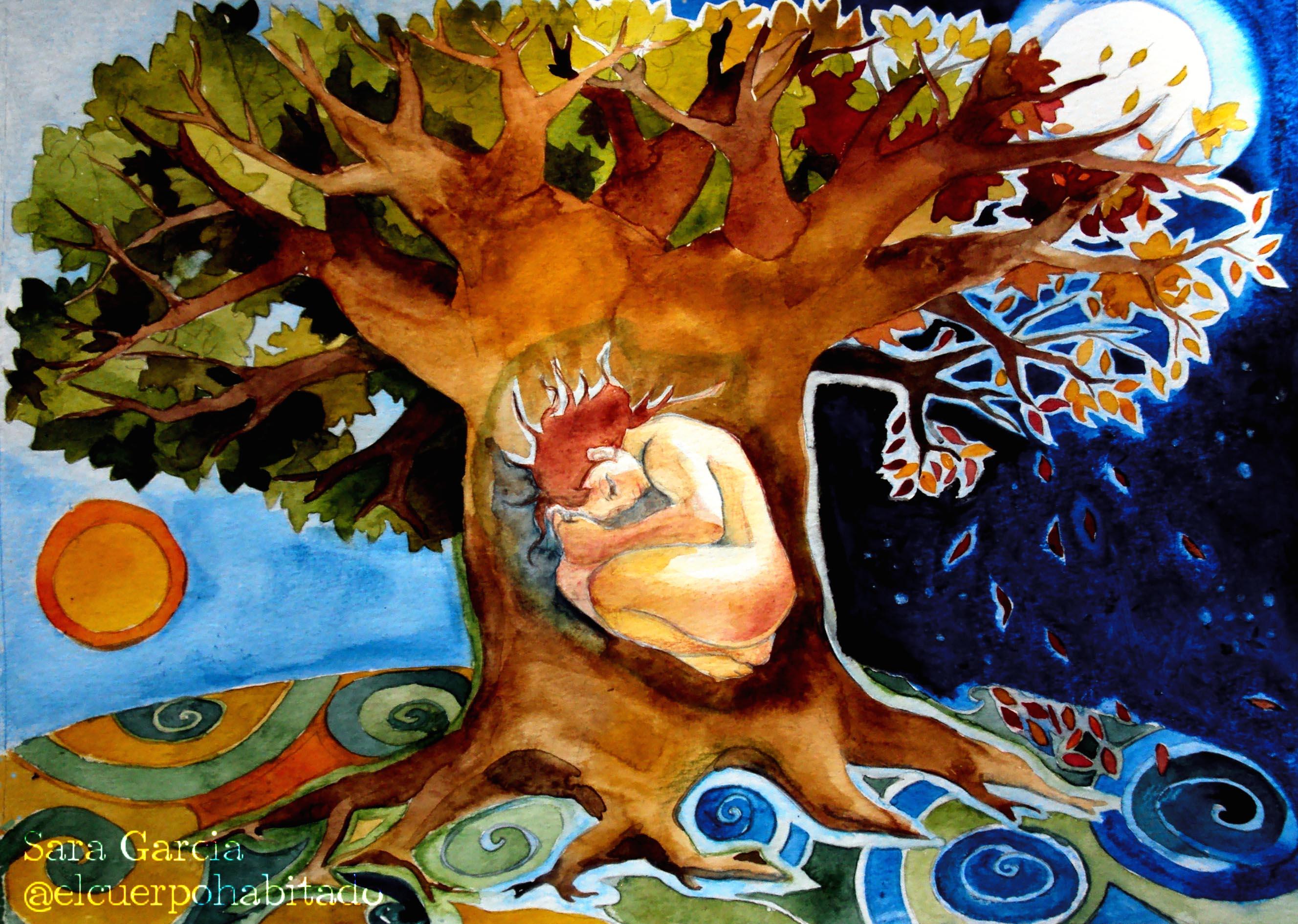 Renacer en el árbol. Sara García Parra